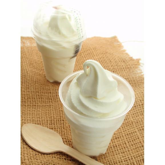四季のカップソフトクリーム 120g×8個02