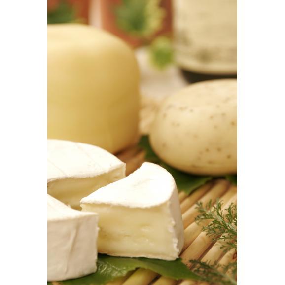 奥出雲厳選チーズ カマンベールチーズ03