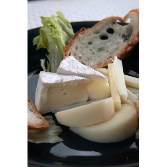 奥出雲厳選チーズ カマンベールチーズ05