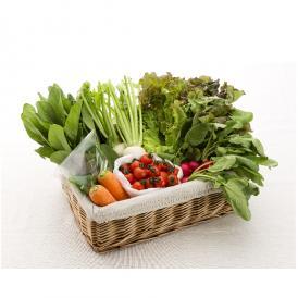 【6月22日(金)出荷】旬のオーガニック野菜セット