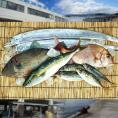 【送料無料】神戸垂水漁港より天然鮮魚を直送!!鮮魚詰め合わせセット 約4~5人前【木曜日までのご注文でその週の土曜日発送】【産地直送のため他商品と同梱不可】北海道・沖縄・離島は配送不可