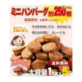 送料無料!メガ盛り 一口ハンバーグ約250個(国産鶏使用)5kg(1kg×5P)