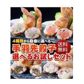 送料無料!手羽先餃子選べるお試しセット(5本×5P)25本【手羽先餃子】