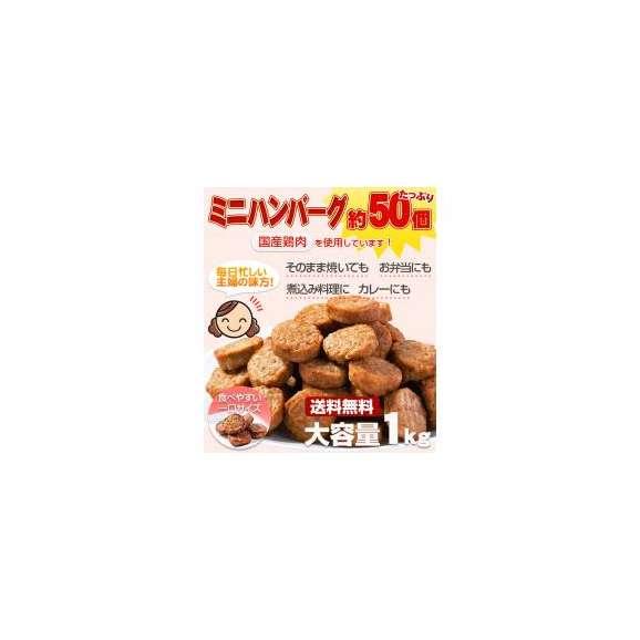 送料無料!メガ盛り 一口ハンバーグ約50個(国産鶏使用)1kg01