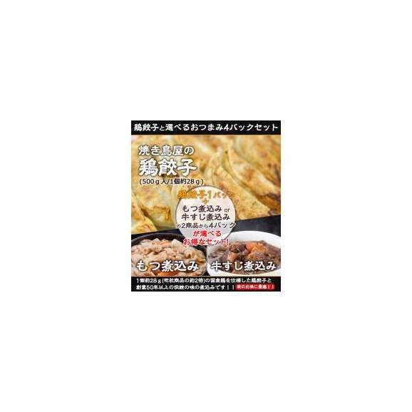 ●送料無料!焼き鳥屋の鶏餃子(500g 一個約28g)と選べるおつまみ4パックセット!01