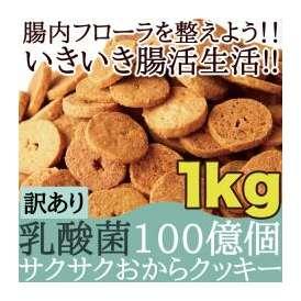 【送料無料】【同梱不可】【訳あり】サクサクおからクッキー1kg 腸内フローラを整え、毎日腸活生活!!乳酸菌100億個!(SM00010290)