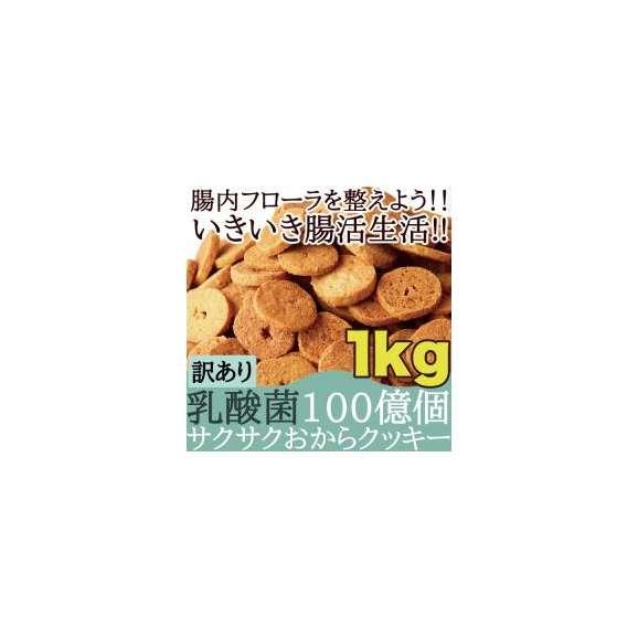 【送料無料】【同梱不可】【訳あり】サクサクおからクッキー1kg 腸内フローラを整え、毎日腸活生活!!乳酸菌100億個!(SM00010290)01