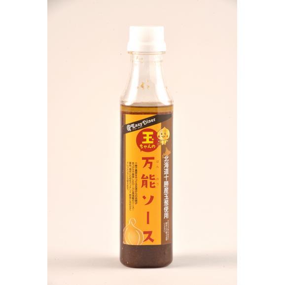 北海道十勝産玉葱使用!玉ちゃんの万能ソース(すりおろし玉ねぎの万能ソース)01
