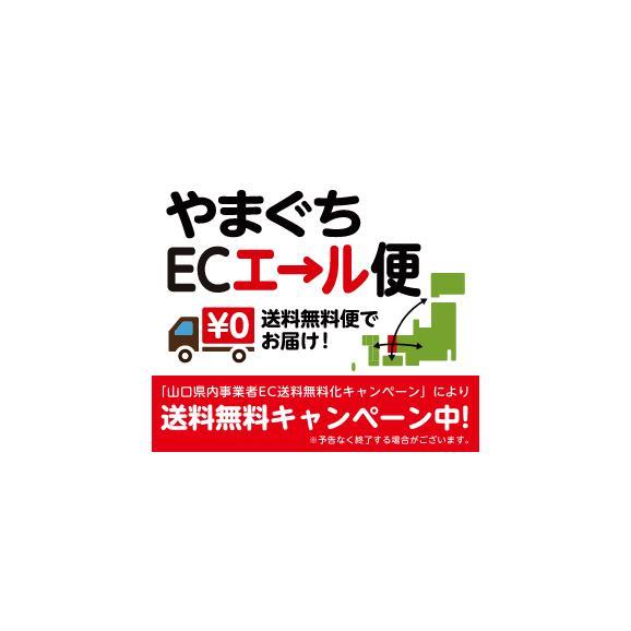 【山口県産】車海老フライ8尾入り1パック(冷凍)04
