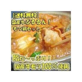 【送料無料】国産牛ぷるるんもつ鍋セット(みそ味)4~5人前