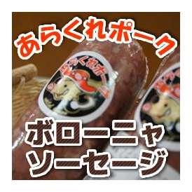 お酒のおつまみに あらくれポーク ボローニャソーセージ(愛媛産 いのしし肉使用)