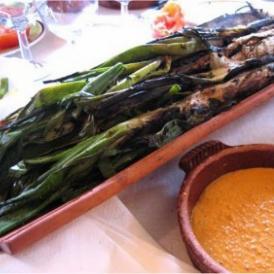 カルソッツ(焼き葱)用 置き皿