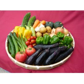 【鳥取産】田中農場 夏の野菜セット(生食用)