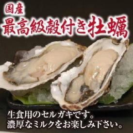 殻付きセル牡蠣(生食用)5個