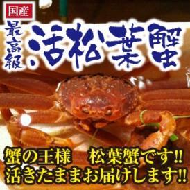 蟹の王様 松葉蟹 特大