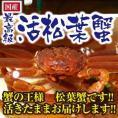 蟹の王様 松葉蟹 大