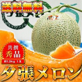 【送料無料】北海道を代表する赤肉メロンの王様!夕張メロン【秀品】1玉で約1.3kg前後(ご自宅用やギフト用にオススメ)(冷蔵)