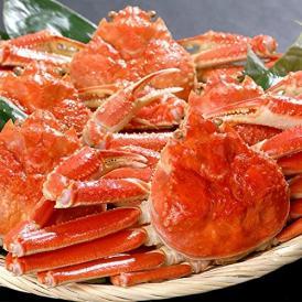 【業務用】ズワイガニ姿3kg分5~6尾[ずわいがに蟹][味噌みそ][ボイル加熱済み][カニパーティー]