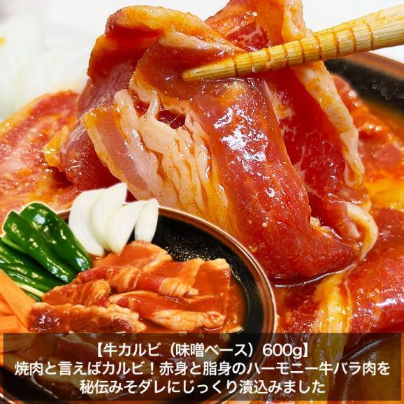 てんこ盛り焼肉セット 5~6人前 [牛タン、カルビ、ハラミ、焼き鳥串など含め7品4kg超] [BBQ バーベキュー]04