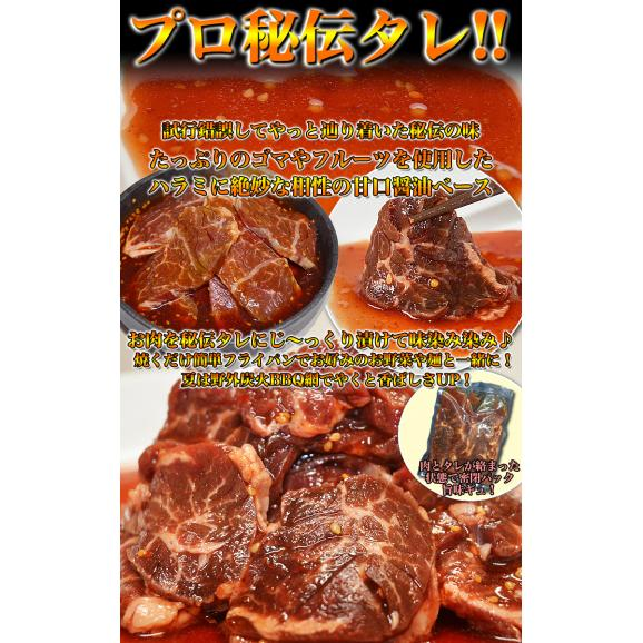 特売 牛ハラミ サガリ 600g×2 タレ込み 厚切 味付き 焼肉 BBQ バーベキュー03