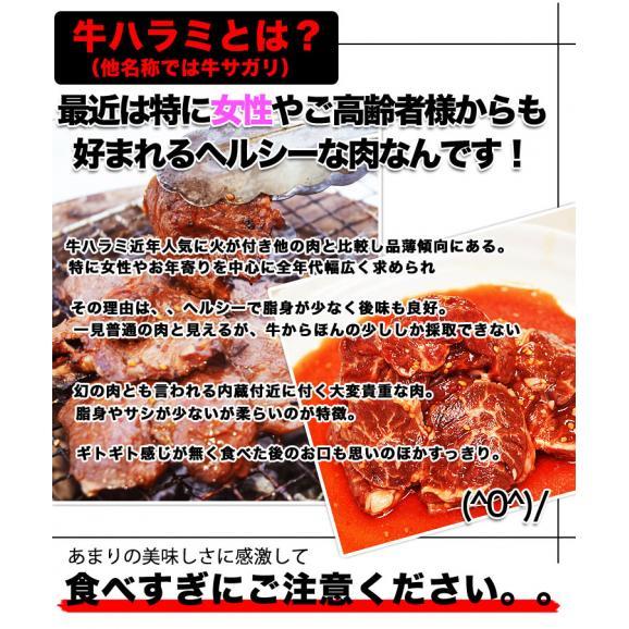 特売 牛ハラミ サガリ 600g×2 タレ込み 厚切 味付き 焼肉 BBQ バーベキュー04
