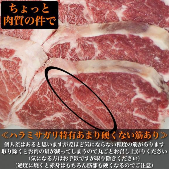 特売 牛ハラミ サガリ 600g×2 タレ込み 厚切 味付き 焼肉 BBQ バーベキュー05