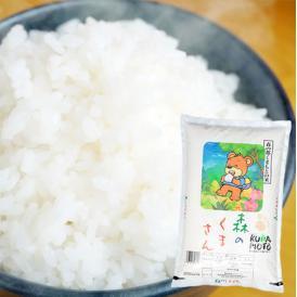 森のくまさん 米 送料無料 5kg 令和2年産 新米 熊本県産 白米 お米 こめ 新米 ひのひかり こしひかり
