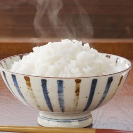 ひのひかり 米 送料無料 5kg 令和2年産 新米 熊本県産 お米 白米 玄米 コシヒカリ 森のくまさん