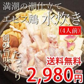送料無料 宮崎県産 エビス鶏 水炊きセット 4人前 旨味が濃縮コラーゲンたっぷり 水炊き 鶏鍋 鍋 なべ 宮崎 コラーゲン 鶏肉