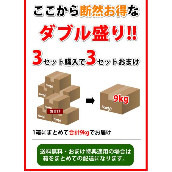 デコポン 同品種 訳ありデコみかん 1.5kg S〜3L 送料無料 2セット購入で1セットおまけ 3セット購入で3セットおまけ 熊本県産 フルーツ みかん ミカン 蜜柑04