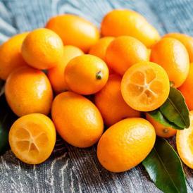 金柑 みかん 完熟フルーツきんかん 送料無料 1kg 2セット購入で1セットおまけ 熊本県産 フルーツ お取り寄せ ハウス栽培  柑橘