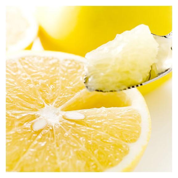 河内晩柑 文旦 みかん 送料無料 秀品 5kg M~2L 和製グレープフルーツ 熊本県産 ジューシーオレンジ 美生柑01