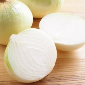 玉ねぎ サラダ玉ねぎ 5kg 送料無料 新玉 S~L 熊本県産 玉葱 たまねぎ 野菜