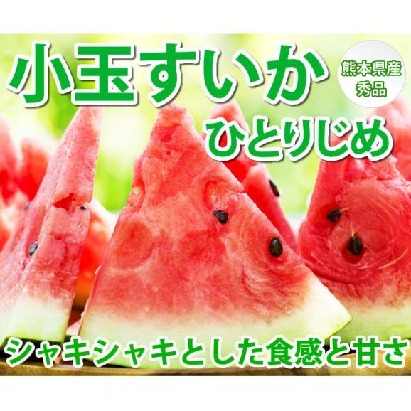 すいか 小玉すいか ひとりじめ 送料無料 秀品2玉 約3kg 熊本県産 西瓜 スイカ 02