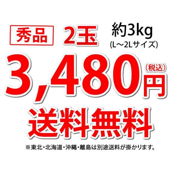 すいか 小玉すいか ひとりじめ 送料無料 秀品2玉 約3kg 熊本県産 西瓜 スイカ 04