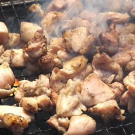 送料無料 鶏もも炭火焼き 本場 宮崎名物 100g×2 ポイント消化 お取り寄せ ポッキリ 国産 おつまみ 焼き鳥 地鶏 鶏