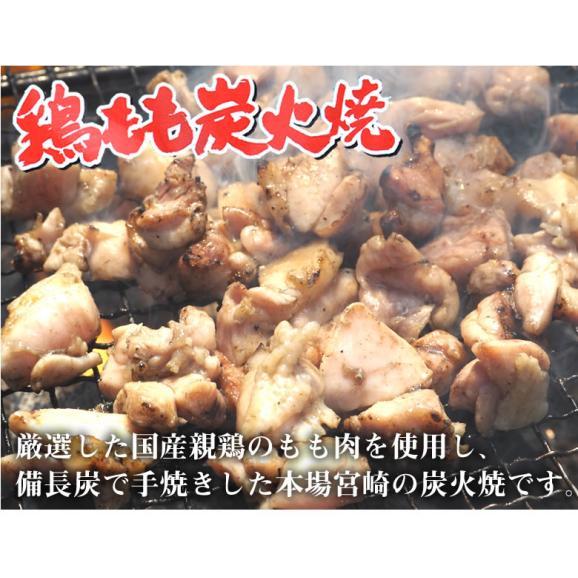送料無料 鶏もも炭火焼き 本場 宮崎名物 100g×2 ポイント消化 お取り寄せ ポッキリ 国産 おつまみ 焼き鳥 地鶏 鶏02