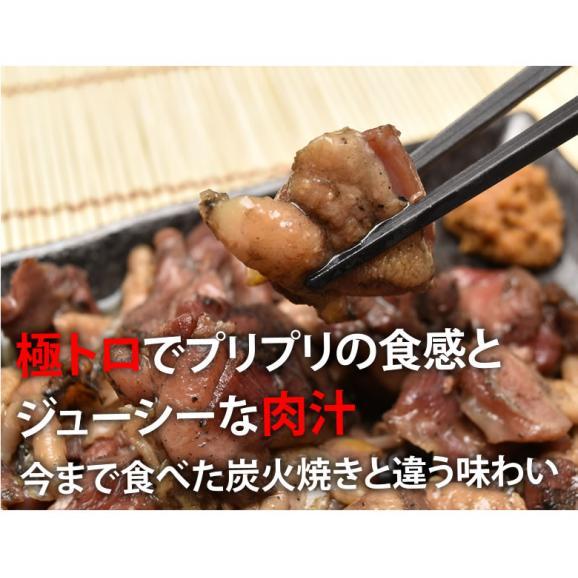 送料無料 鶏もも炭火焼き 本場 宮崎名物 100g×2 ポイント消化 お取り寄せ ポッキリ 国産 おつまみ 焼き鳥 地鶏 鶏06