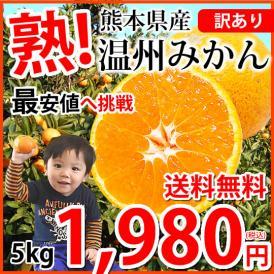 みかん 送料無料 訳あり 温州みかん 5kg 2S~3L 熊本県産 熊本みかん 蜜柑 ミカン