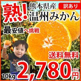 みかん 送料無料 訳あり 温州みかん 10kg 2S~3L 熊本県産 熊本みかん 蜜柑 ミカン