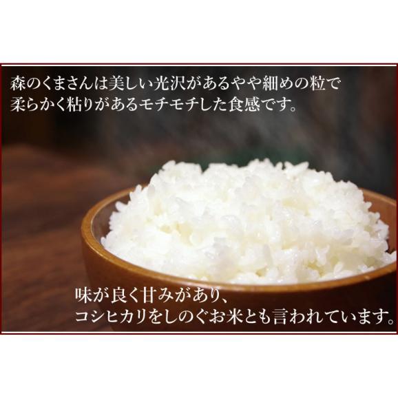 森のくまさん 米 送料無料 お試し 計900g 450g×2 約6合 熊本県産 ポイント消化 ポッキリ お米 白米 玄米 コシヒカリ ヒノヒカリ05