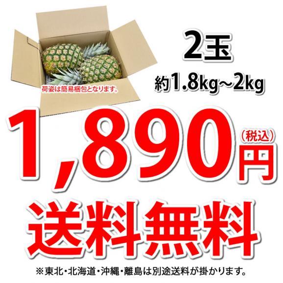 パイナップル パイン グルメパイン 送料無料 2玉(約1.8kg~2kg) フィリピン産 2箱購入で1箱おまけ03