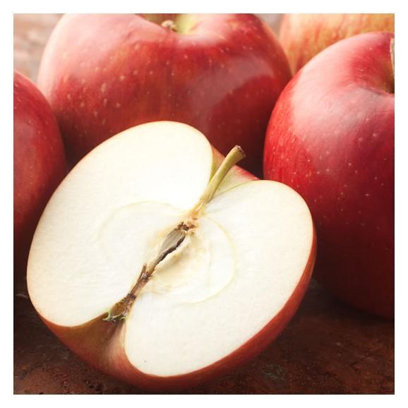 りんご 訳あり リンゴ 送料無料 約1.5kg 長野・青森県産 2セットで1 ...