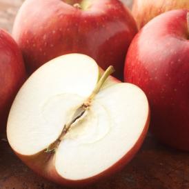 りんご 訳あり 約5kg(4.5〜5kg) リンゴ 送料無料 長野・青森県産 サンふじ つがる ジョナゴールド ふじ 林檎