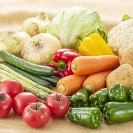 その時の旬の時期の野菜セット