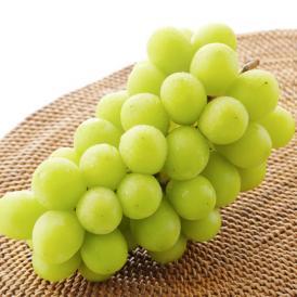 ロザリオビアンコ ぶどう 送料無料 2kg 3~5房 福岡・熊本県産 シャインマスカット 葡萄 ブドウ