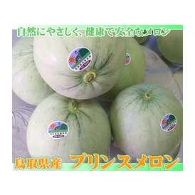 【送料無料】【プリンスメロン】(7-11玉入り:4kg程度)[鳥取県特別栽培認証品][常温]