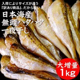 干しハタハタ(無頭)【訳あり】1kg【冷凍】【送料無料】