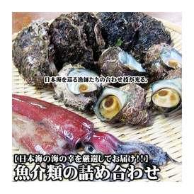 魚介類の詰め合わせ2980円セット福袋(魚介類2~4品程度入) 【送料無料】