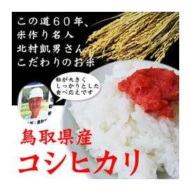 【28年産】(お徳用)【鳥取県産】極太米「コシヒカリ」20kg(10kg×2袋)[送料無料][常温]